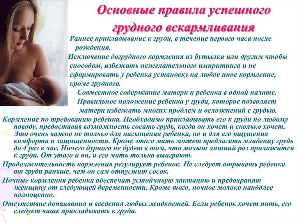 10 принципов грудного вскармливания по версии всемирной организации здравоохранения
