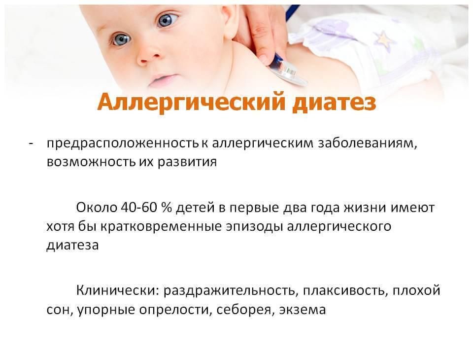 Как проявляется и на каких животных аллергия у грудничков и детей: симптомы