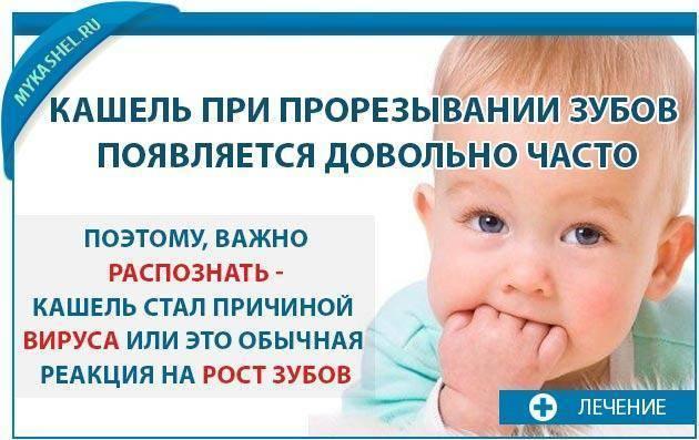 Могут ли быть сопли при прорезывании зубов у ребенка 8 месяцев | здоровье зубов