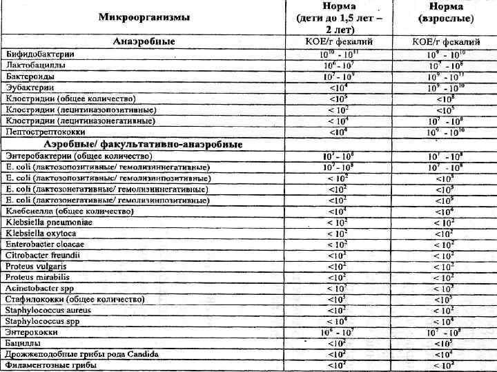 Клебсиелла в кале у взрослых: симптомы и лечение