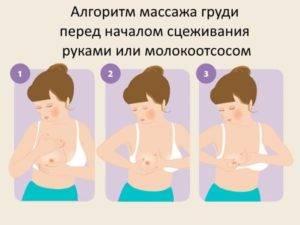 Массаж груди при кормлении: как правильно массировать грудные железы для увеличения лактации и другие особенности