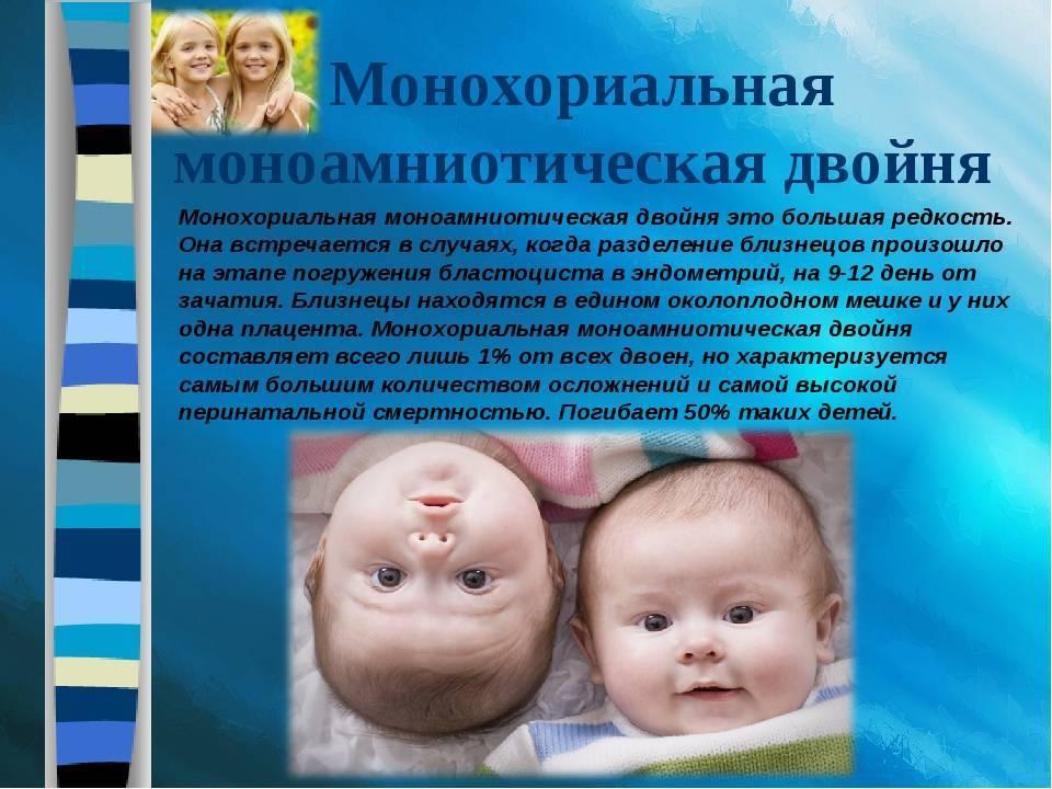 Искусственное оплодотворение: особенности и риски использования эко, а также беременность двойней и более