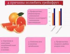 Грейпфрут во время беременности: положительных качеств > деловая гармония