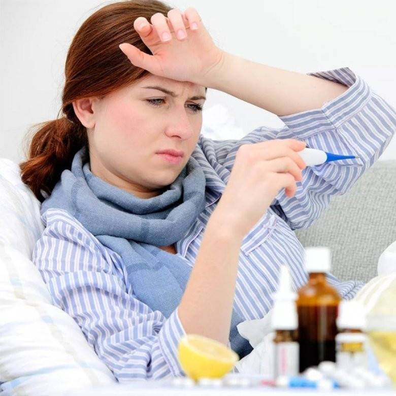 Мышиная лихорадка симптомы и лечение