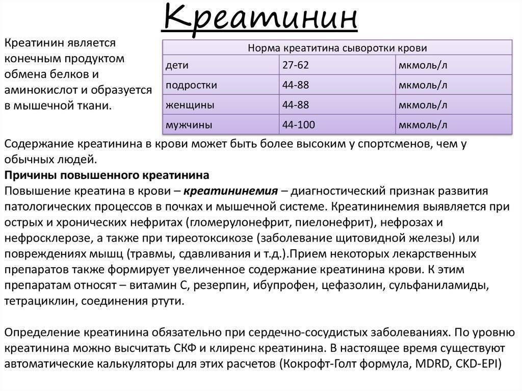 Креатинин норма у детей в крови: таблица, понижен у ребенка, повышен причины