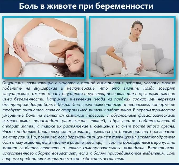 Почему при беременности болит низ живота на ранних и поздних сроках