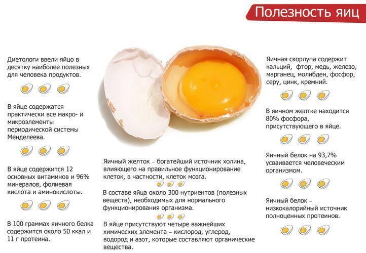 Яйца при грудном вскармливании: можно ли есть, дозировка
