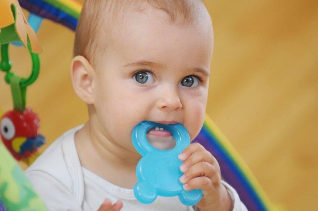 Как выбрать игрушку для прорезывания зубов: фото прорезывателей и инструкции по их применению