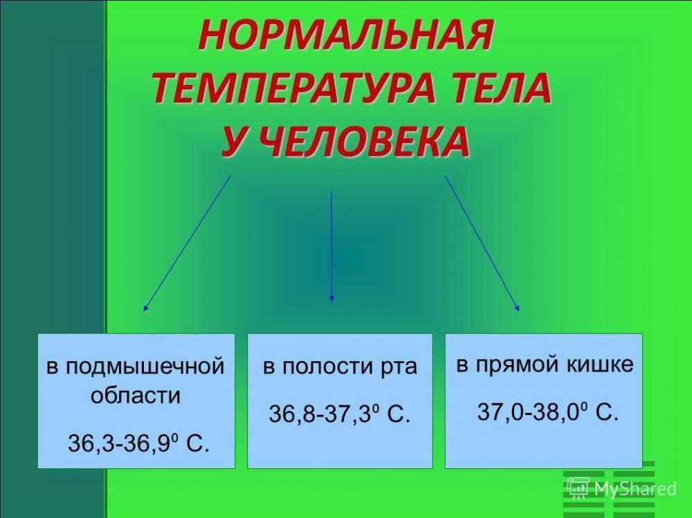 Повышение температуры перед месячными: естественные причины и отклонения от нормы