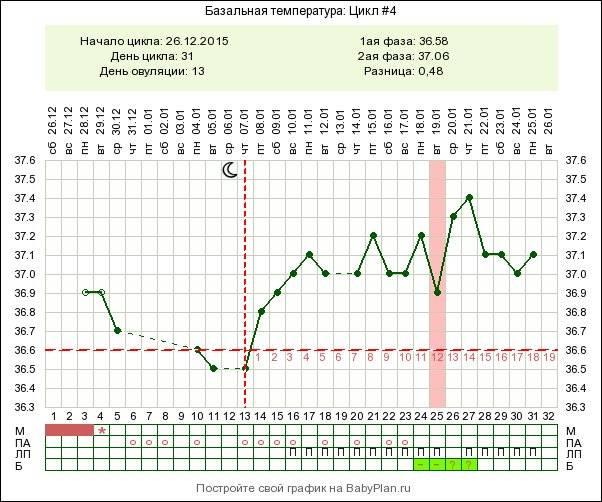 Базальная температура на ранних сроках беременности: нормы и отклонения