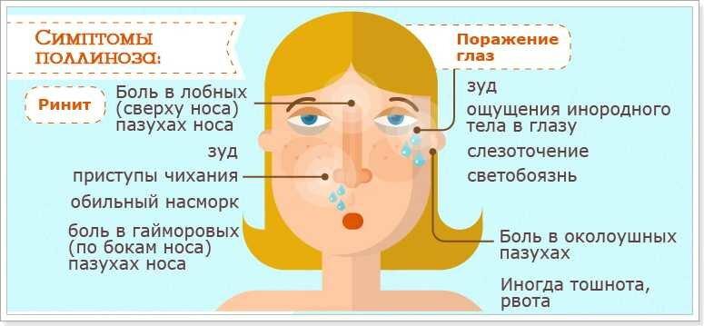 Аллергия на цветение у ребенка: профилактика, симптомы и лечение