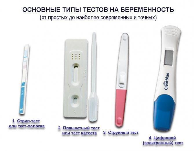 Как определить беременность на ранних сроках в домашних условиях? на каком сроке можно определить беременность?