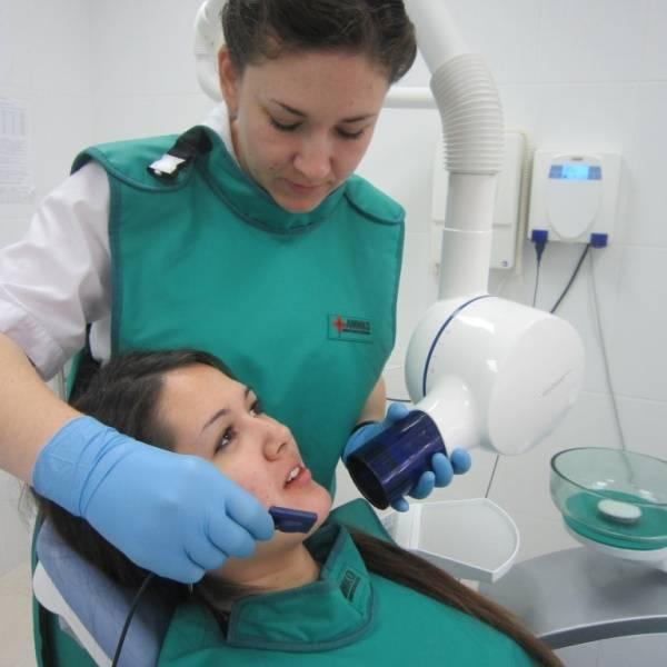 Рентген зуба при беременности: можно ли делать на ранних сроках, последствия