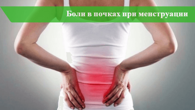 Почему при месячных болят почки: основные причины, симптомы, лечение, профилактика
