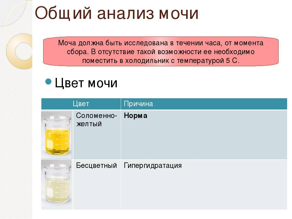 Желтая моча у грудничков: норма и патология. три простых способа собрать мочу у грудничка цвет мочи грудничка 2 месяца