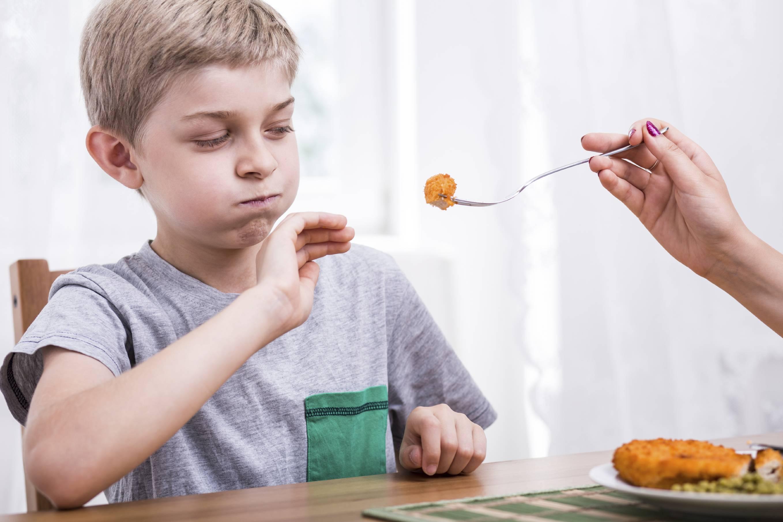 Что происходит с организмом ребенка без мяса?