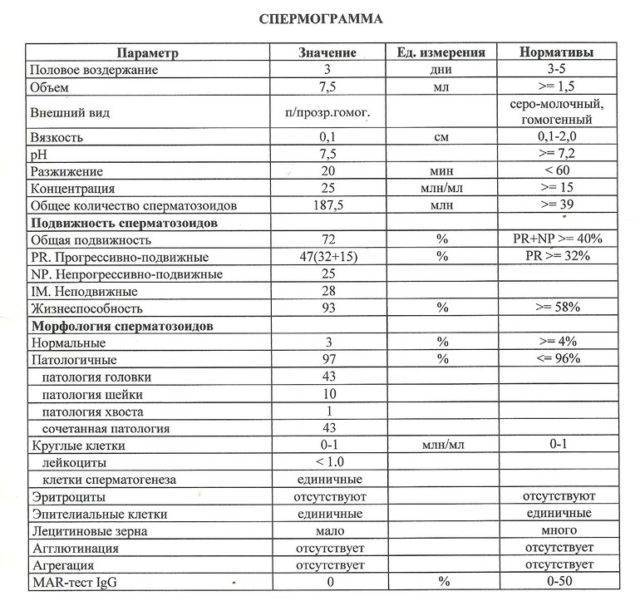 Нормы анализа спермограммы у мужчины: причины аномальной и патологической формы сперматозоидов