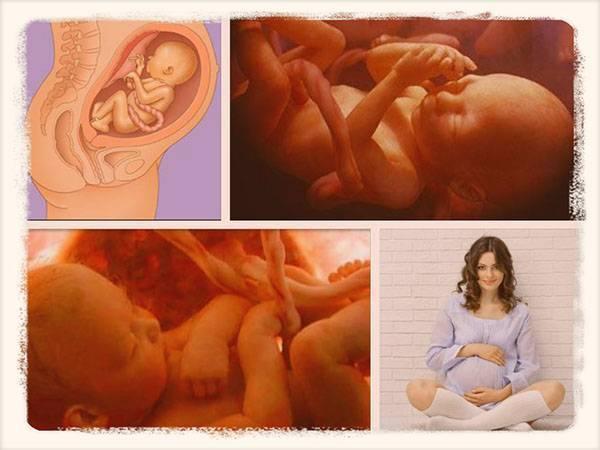 Что испытывает ребенок в утробе когда мама плачет. чаще гладьте живот будущей матери. слышит ли ребенок в утробе матери: голос и музыка