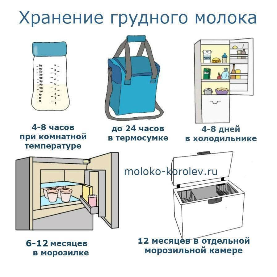 Сколько хранится грудное молоко в холодильнике - срок хранения в бутылочке