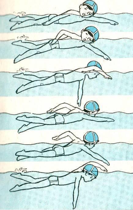 Программы тренировок по плаванию: образцы и рекомендации
