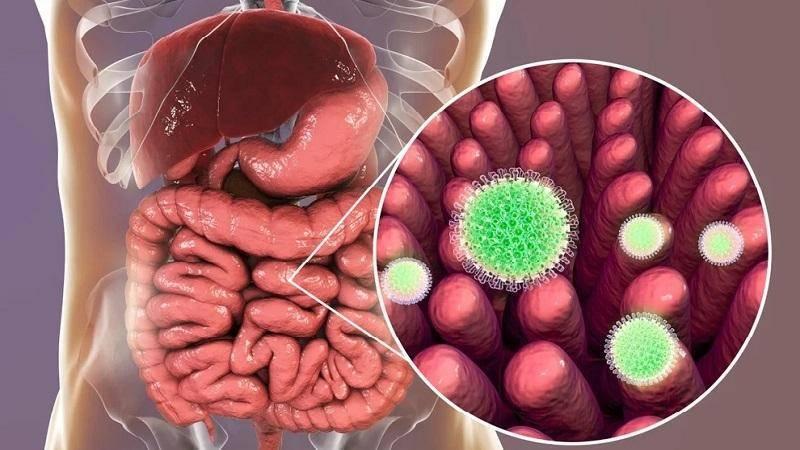 Лечение ротавирусной инфекции у детей: как лечить кишечный грипп и что делать в домашних условиях, схема лечения, первая помощь и антибиотики, чем помочь ребенку на море, что говорит про ротавирус комаровский