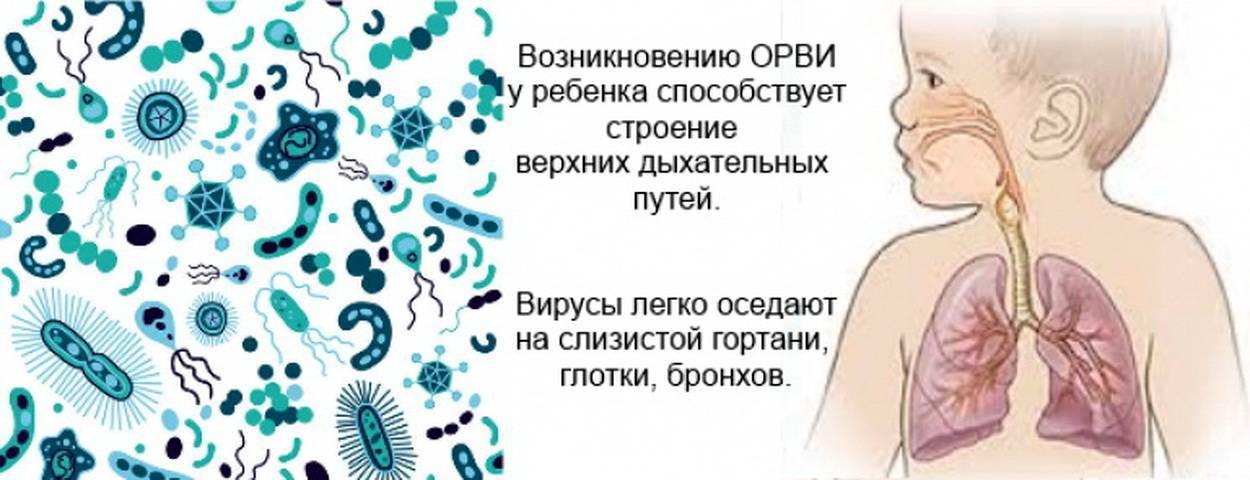 Аденовирусная инфекция у детей - симптомы, лечение, профилактика
