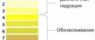 Цвет мочи у ребенка: причины темной, ярко-желтой и коричневой урины по утрам в 2-4 года