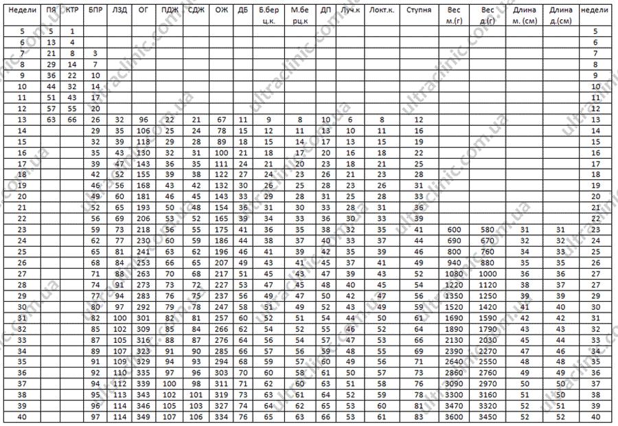 Что такое бпр плода и какие нормы по неделям: таблица показателей и расшифровка отклонений