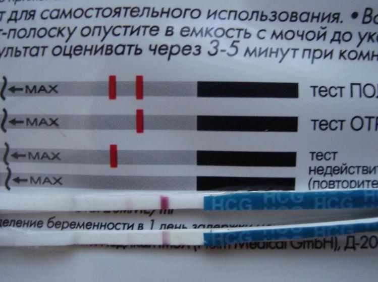 Тест на беременность до задержки месячных, может ли показать достоверный результат / mama66.ru
