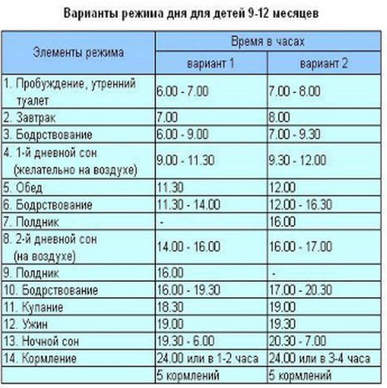 Режим дня ребенка в 11 месяцев + таблица по часам |