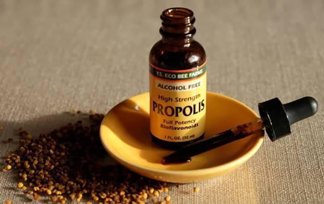 Прополис - лечебные свойства и применение продукта, противопоказания. рецепт настойки прополиса