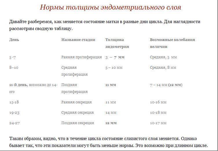 Базальная температура при овуляции: какая должна быть чтобы забеременеть, сколько держится, как измерить и определить самостоятельно