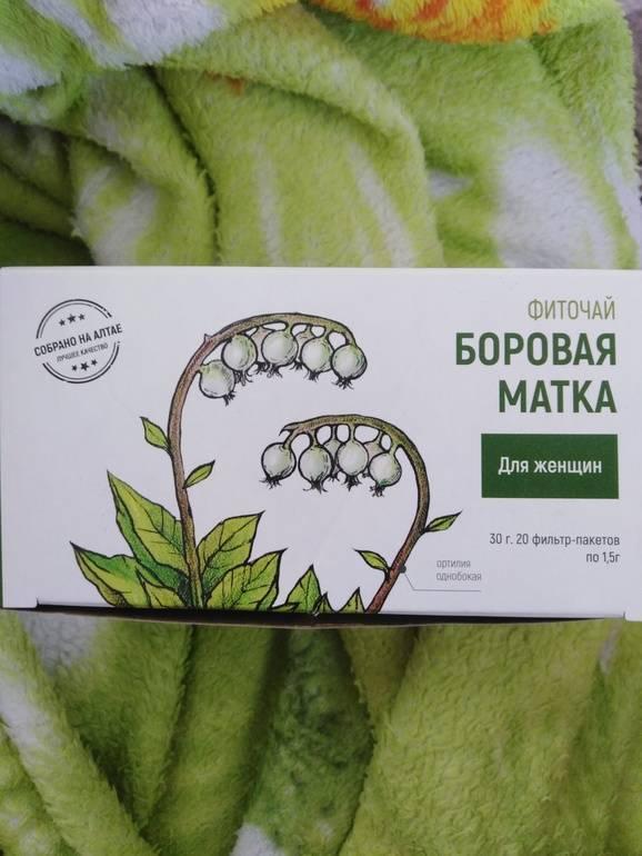 Боровая матка для зачатия: как её принимать / mama66.ru