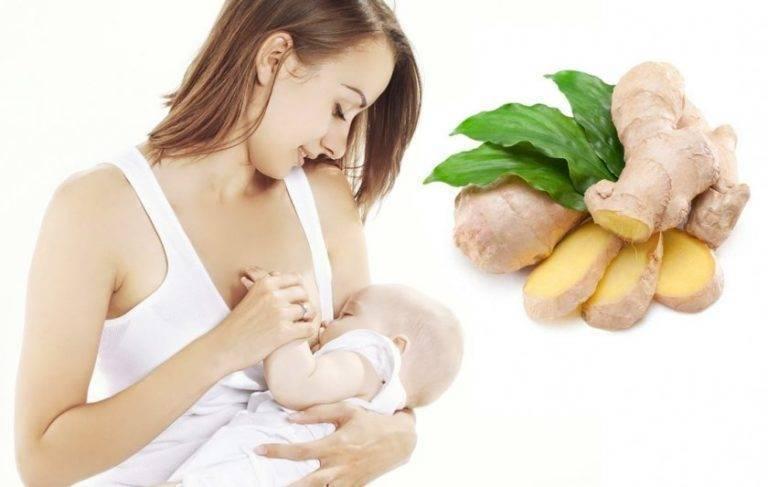 Можно ли чеснок кормящей маме: 5 рецептов при лактации