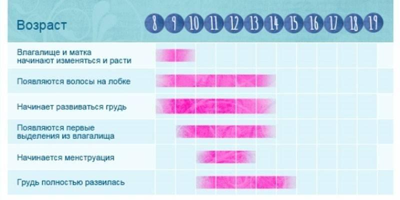 Через сколько дней приходят месячные, как понять, что они скоро начнутся, как долго должны идти?   месячные   vpolozhenii.com