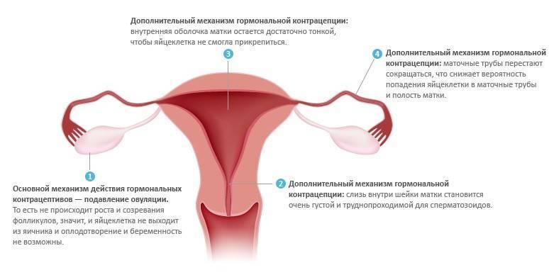 Можно ли стать беременной сразу после окончания приёма противозачаточных таблеток?