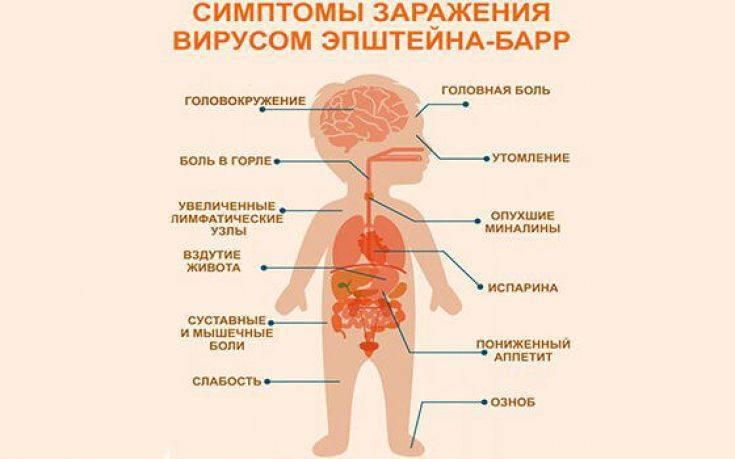 Диета для детей при заболевании герпесом 6. лечение герпеса у детей. gerpeslechim.ru