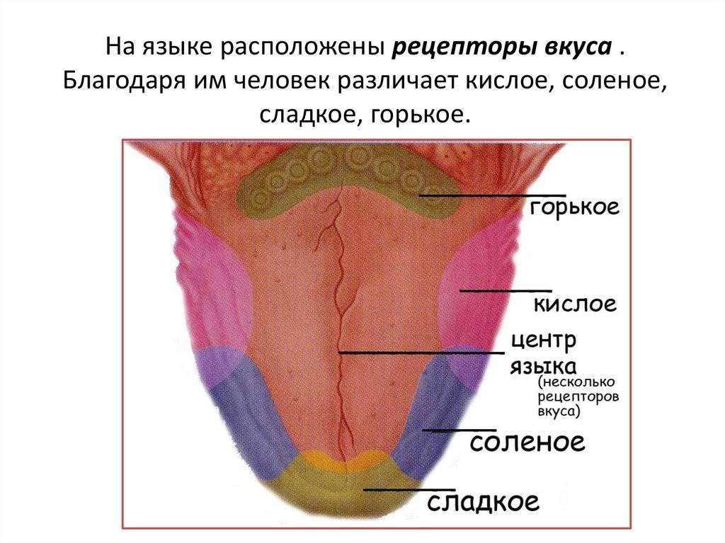 Грудное молоко стало соленым почему - west-stomatolog.ru