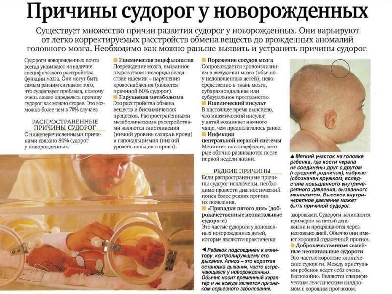 Детские колики у младенцев до какого возраста продолжаются и что делать при коликах у новорожденного