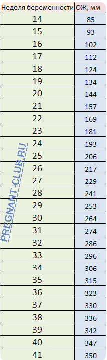 Окружность живота при беременности: норма по неделям, таблица, отклонения, как измерить у мамы