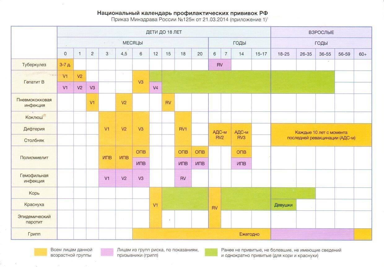 Когда проводится вакцинация ? и ревакцинация от полиомиелита по календарю прививок — топотушки