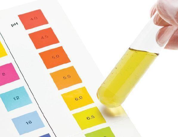 Анализ мочи по сулковичу: расшифровка, сбор урины для пробы