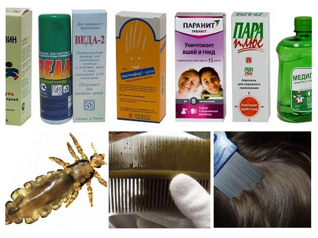 Профилактика педикулеза у детей: памятка мер предосторожности, а также средства для защиты от гнид и вшей (шампуни, спреи)