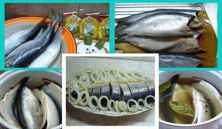 Можно ли есть вареную рыбу при гв