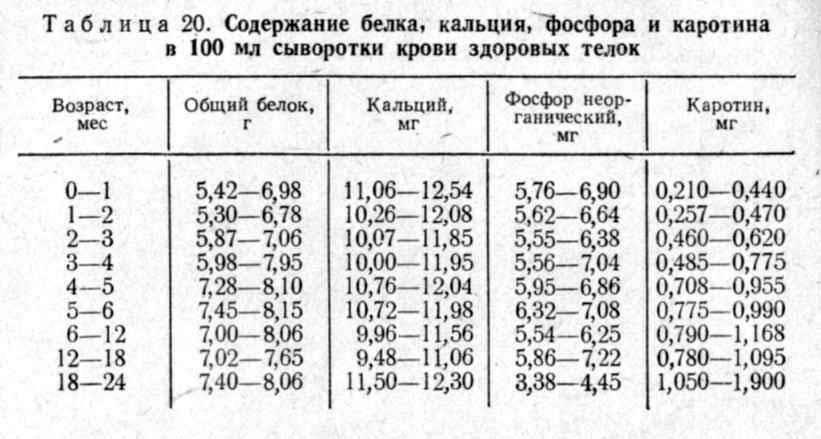 Точные нормы кальция в крови у женщин и мужчин