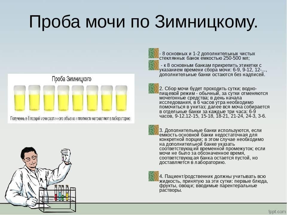 Что такое проба сулковича - расшифровка анализа мочи, баллы и как собирать?