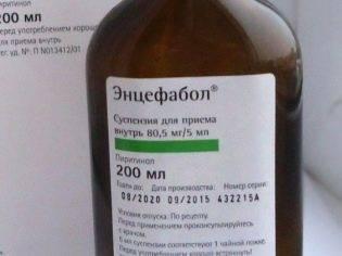 Энцефабол: от чего назначают (таблетки), дозировка, цены