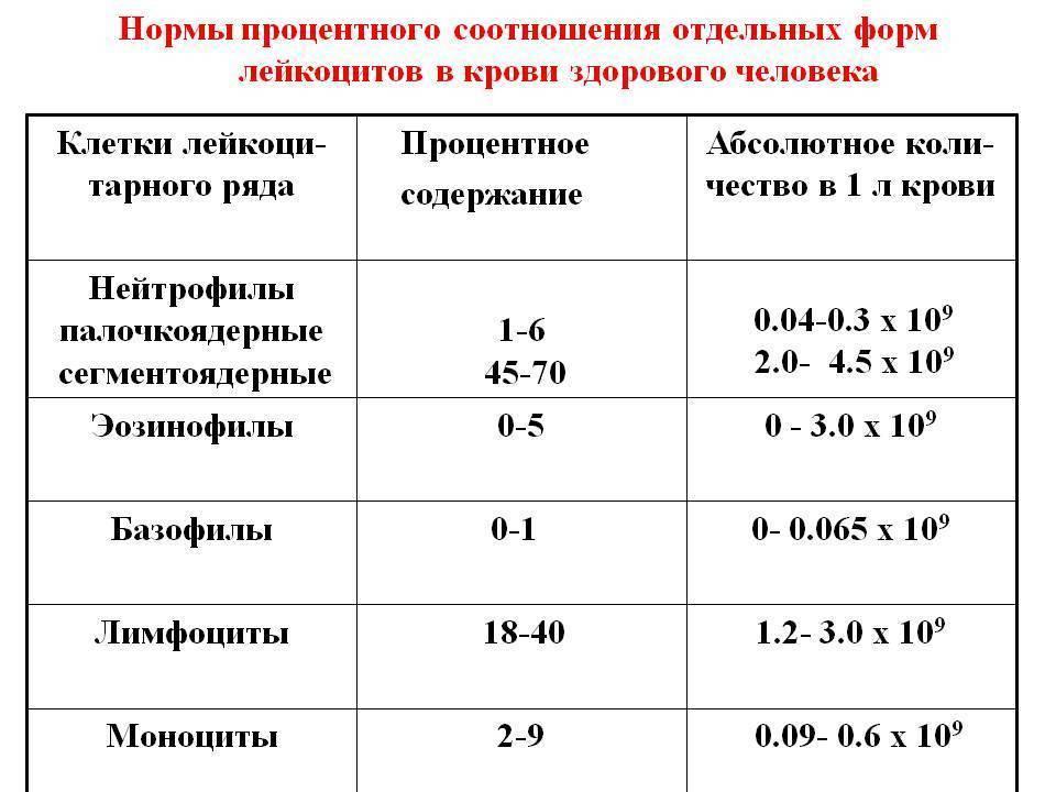 Норма лейкоцитов в крови у детей: до 1 года, от 2 до 10 лет и старше