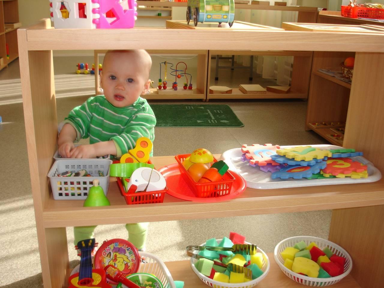 Раннее развитие детей: какие методики, игры и занятия способны сделать из младенца гения