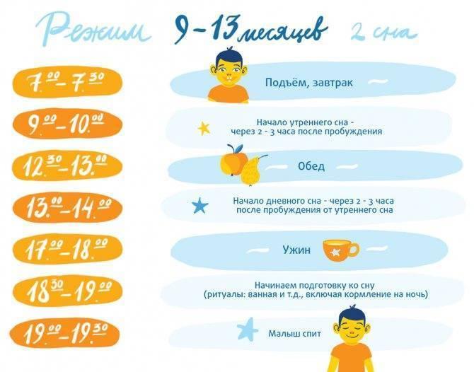 Режим дня 5-месячного ребенка